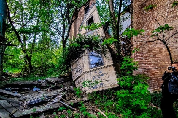 Dilapidated row house window in overgrowth