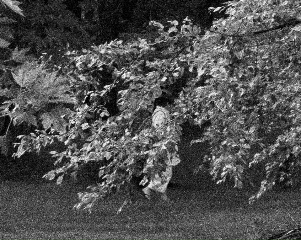 Black and white photo of person walking behind foliage