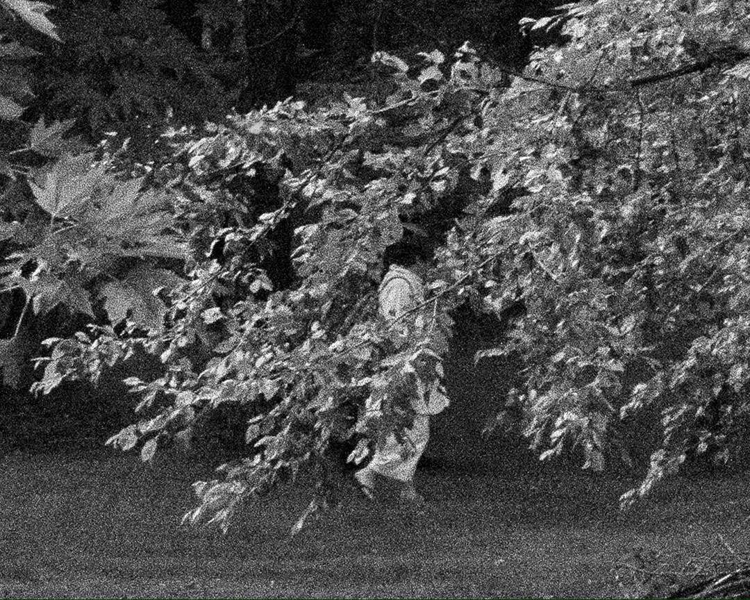 Black & white photo someone behind tree branches